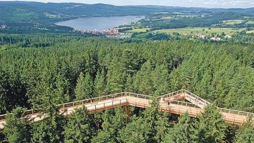 Novoroční výstup na Stezku korunami stromů či bájnou horu Blaník