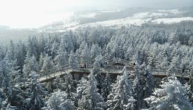 Zima na Stezce korunami stromů Lipno