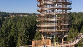 Stezka korunami stromů Pohorje