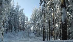 Zima na Stezce korunami stromů LipnoZima na Stezce korunami stromů Lipno
